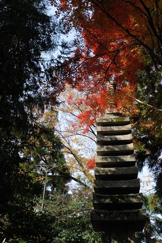 20101128_kyoto5.jpg